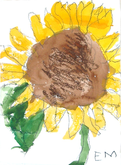 Emily Malin, Sunflower